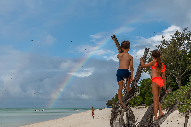 Rainbow Enthralls by John McGrath