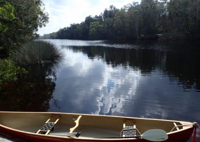 The canoe is waiting for you on the Noosa River by Alison Harris