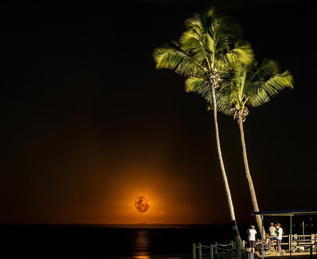 Anticipated Moonrise by Ellen Foulds