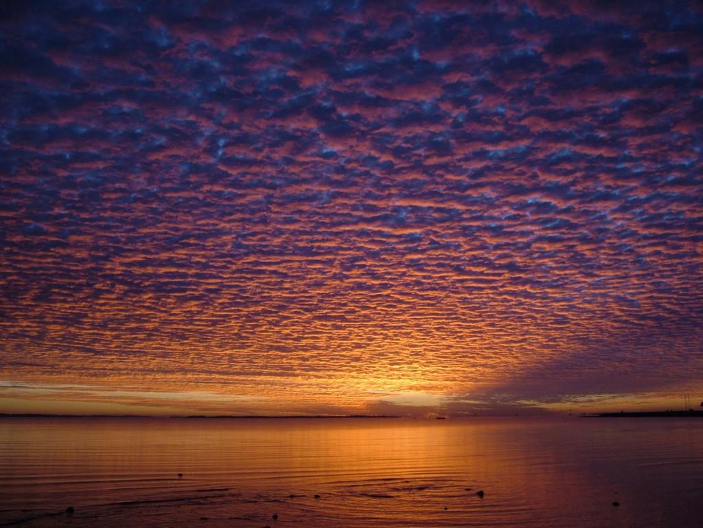 Mari Bowering_Morning-Serenity