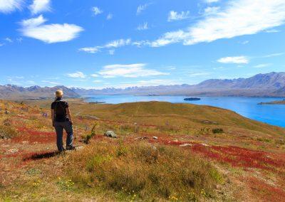 New Zealand View by Steffen Bollman
