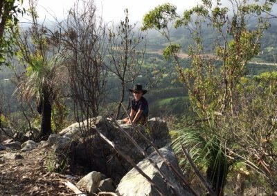 Cooroora Climbing by Wendy Oliver