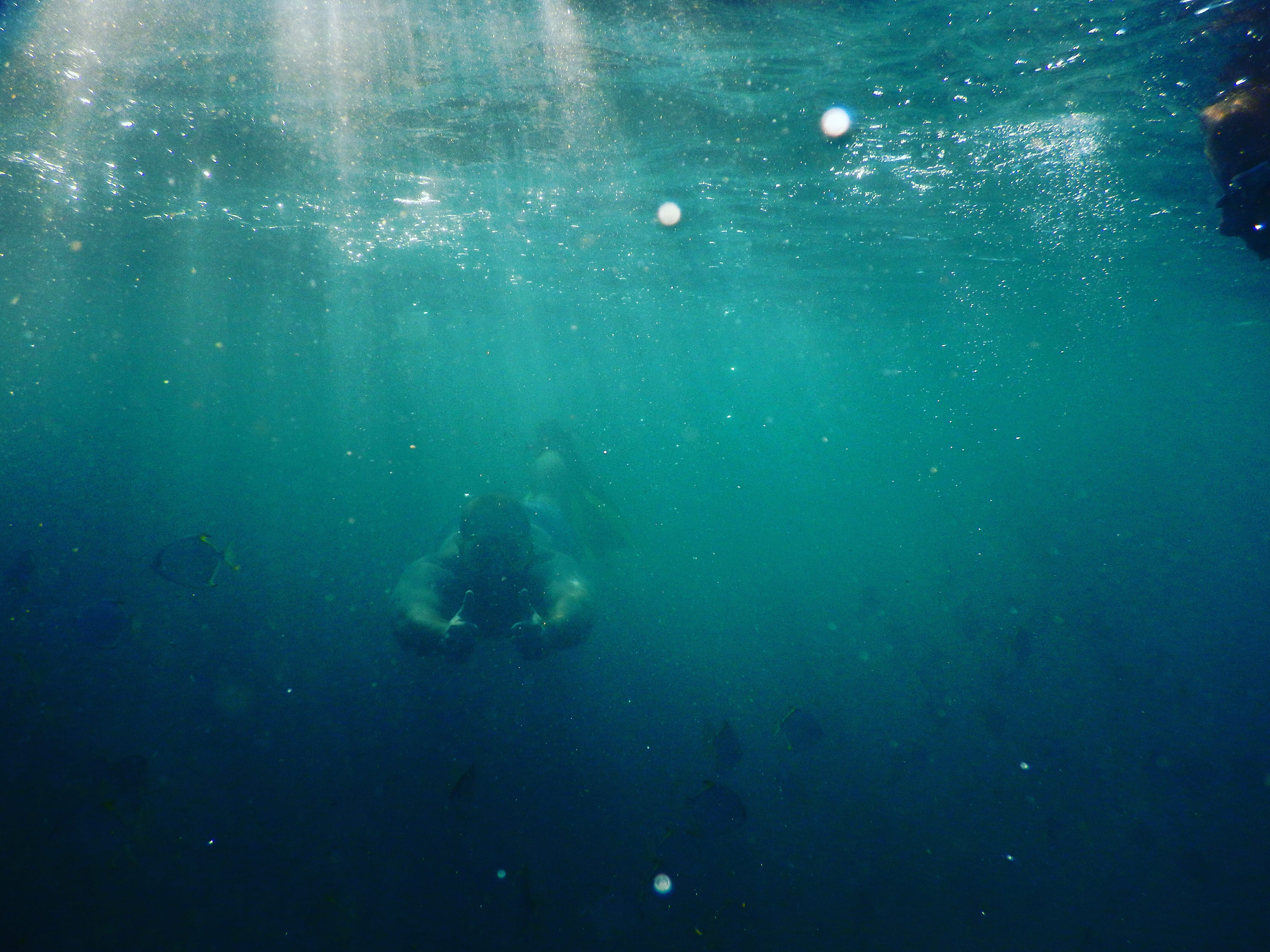 Underwater by Ryleigh Fronis