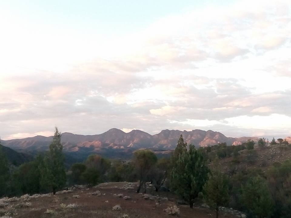 Looking toward my Goal - Wilpena Pound by Aaron Simson-Woods