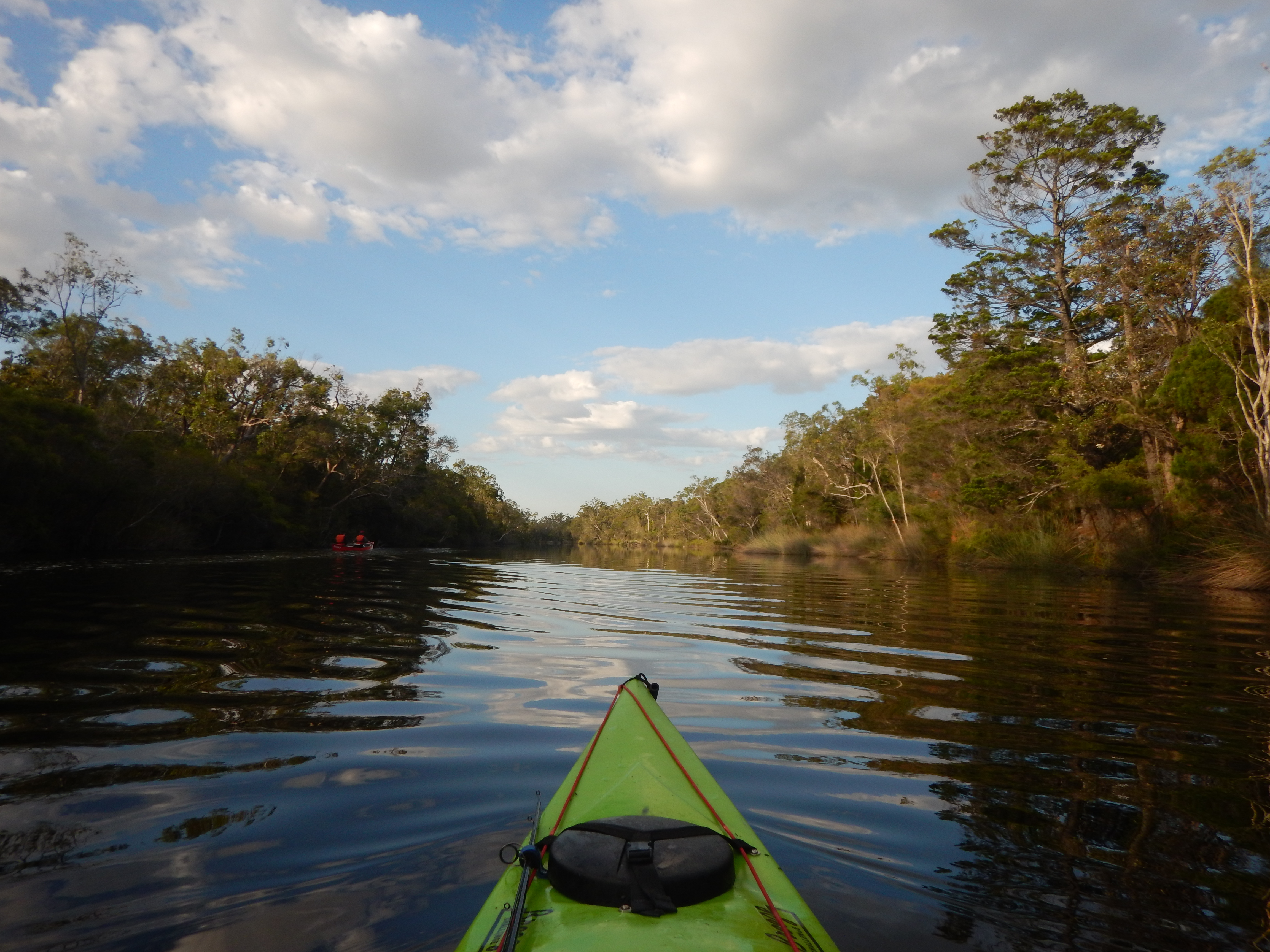 Everglades 1 by Kara Hartwig