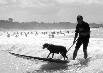 Surf Dog by Christian Botella