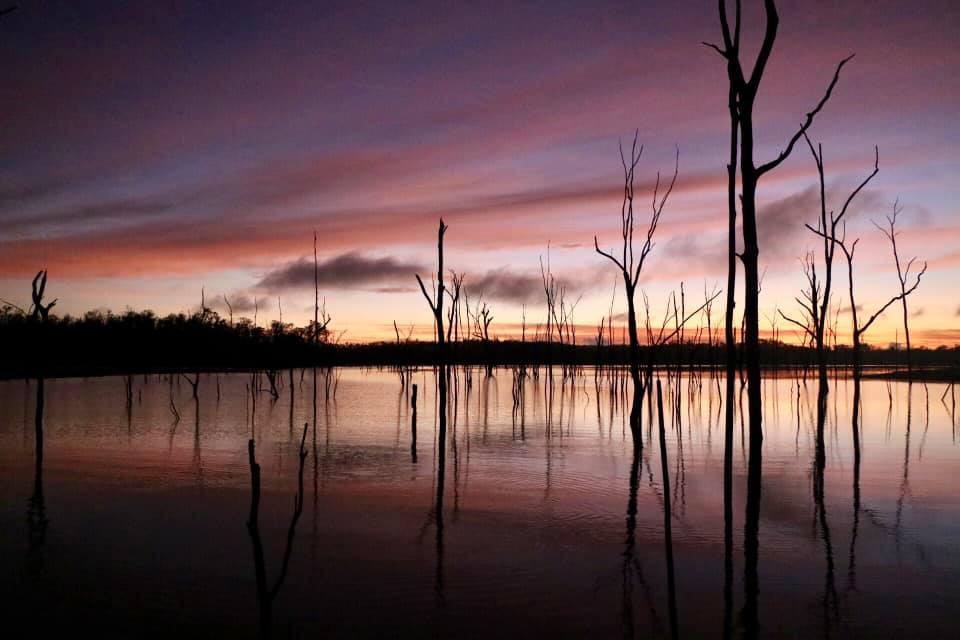 Lake Monduran by Julie Whalley