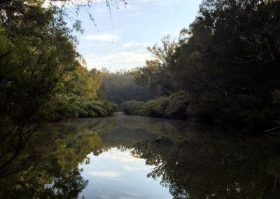 Angelina-_Finch_River-reflections-wa