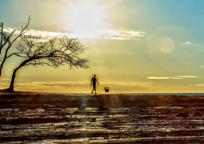 Ellen_Foulds_Sunset-Exercise