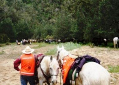 Melanie-Doheny-Glenmaurrie-Station-ATHRA-Trail-Ride-Camp