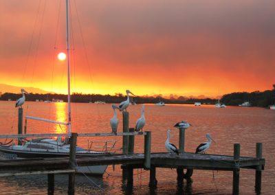 Peta_Newcombe_BushfireSunset