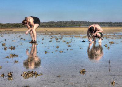 Sarah_Haskmann_Peel-Island-Reef-Walk